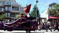 Shady Isle Pirates Parade Float