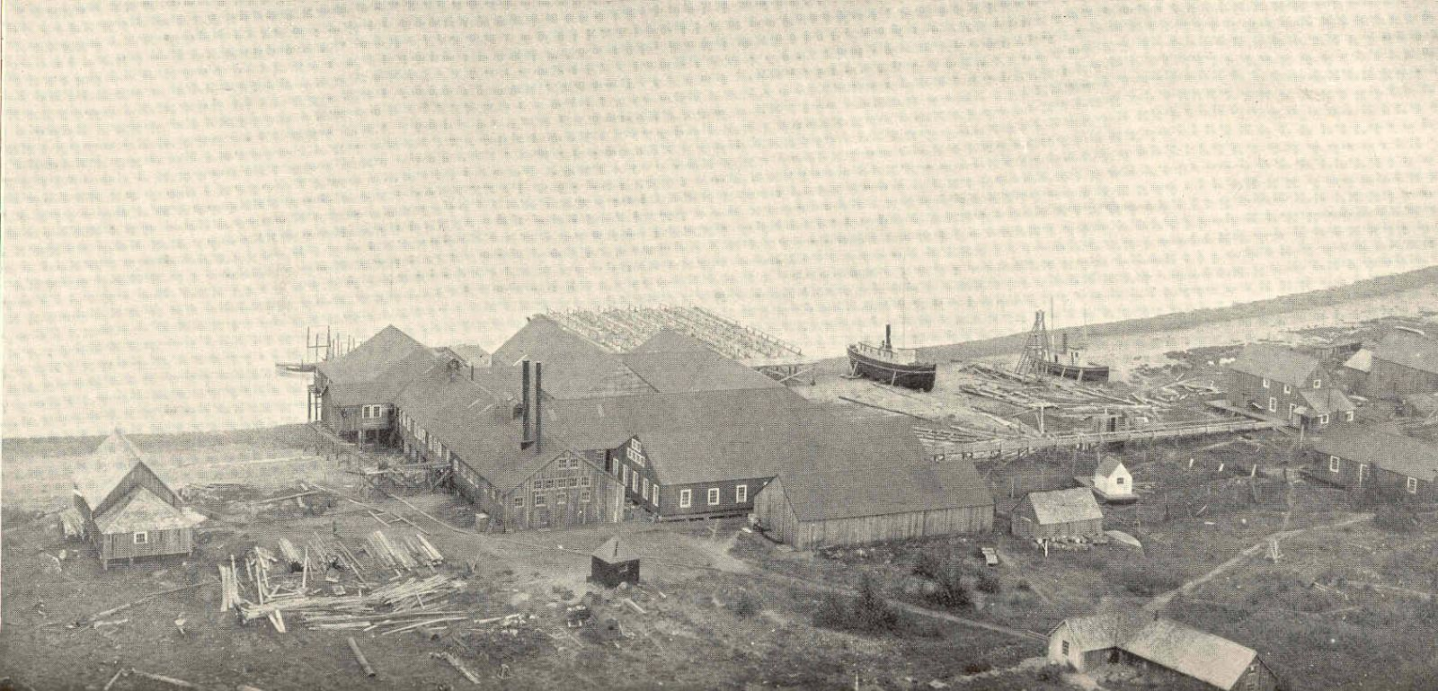Alaska Packers Association Cannery At Pyramid Harbor - 1899