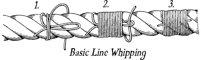 how to whip a line