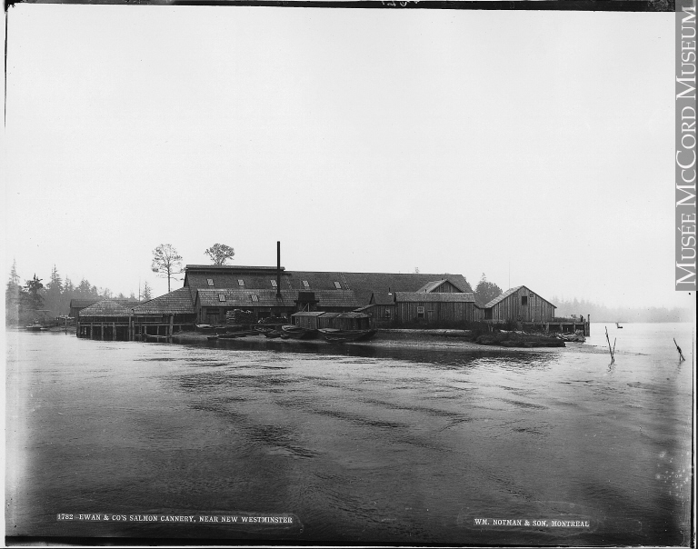 Photograph | Ewan & Co's Salmon Cannery, near New Westminster, BC, 1887